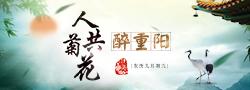 渭南250×90.png